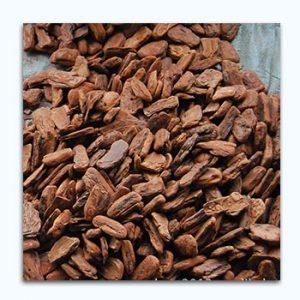 عصاره-پوست-درخت-کاج